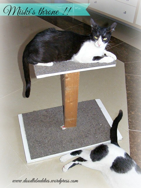 CAT TREE DIY 2