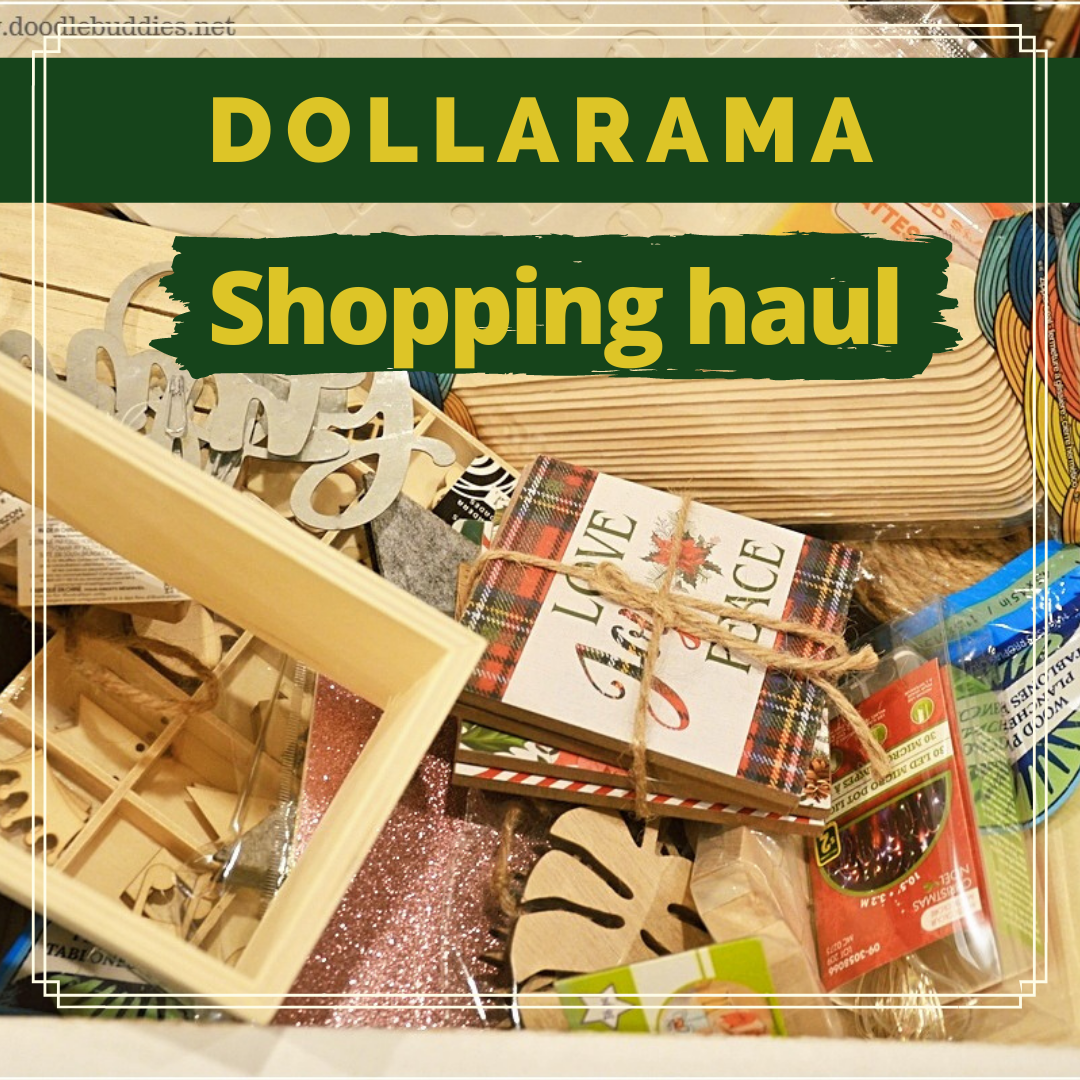 DOLLARAMA – Fun finds and huge shopping haul | Cheap and best buys